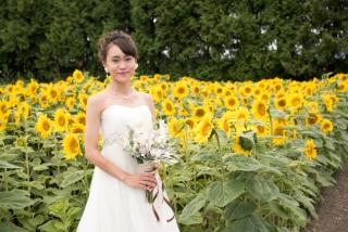 228119_北海道_ラベンダー、お花畑、鳥沼公園、富良野