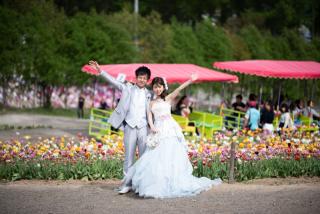 212779_北海道_お花畑のパッチワーク