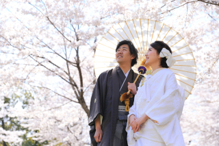 312801_宮城_【2021年】桜ロケーションイメージ