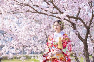 312815_京都_【2021年】桜ロケーションイメージ