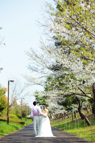 312804_東京_【2021年】桜ロケーションイメージ