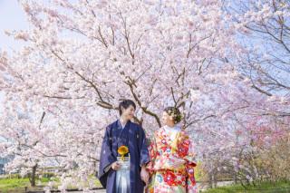 312814_京都_【2021年】桜ロケーションイメージ
