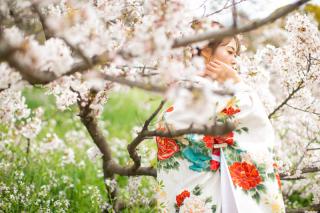 312808_東京_【2021年】桜ロケーションイメージ