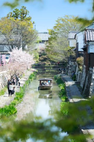 219553_京都_Pick UP