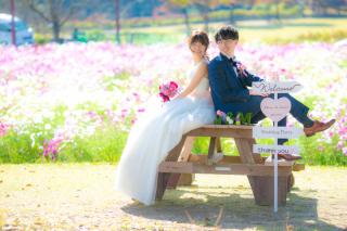 266051_鹿児島_SUMMER〜AUTUMN