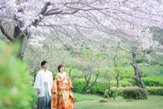 319236_鹿児島_SPRING〜EARLY SUMMER