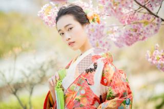 233832_大阪_桜◎和装Photo