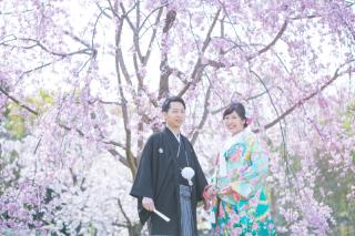 233821_大阪_桜◎和装Photo