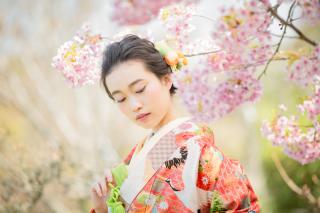 233831_大阪_桜◎和装Photo