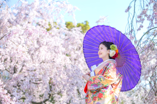 233822_大阪_桜◎和装Photo