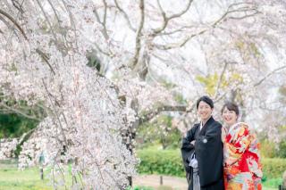 233833_大阪_桜◎和装Photo