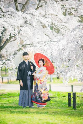 233810_大阪_大阪 桜