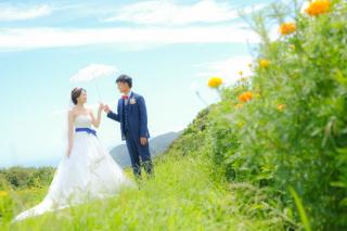 247059_兵庫_洋装撮影(花畑、海、スタジオ他)