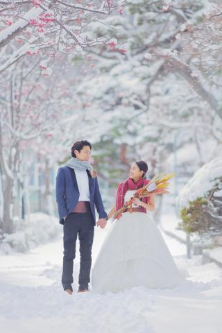 243880_北海道_【雪ロケフォト-冬winter】北海道ならではの幻想的な一枚を