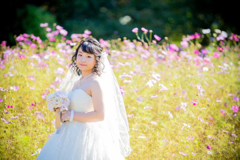 とっとり花回廊_トップ画像3
