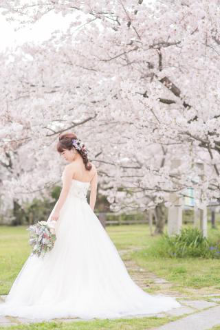 255928_愛知_ウエディングドレス・カラードレス