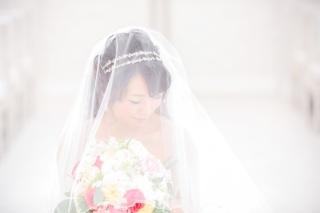 255736_愛知_ウエディングドレス・カラードレス