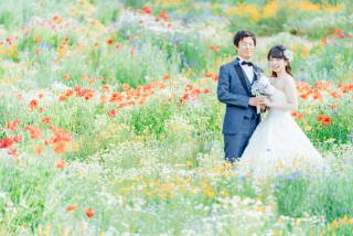 256376_東京_昭和記念公園(洋装)