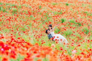 256378_東京_昭和記念公園(洋装)