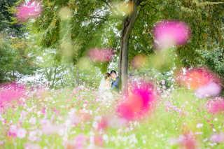 256397_東京_昭和記念公園(洋装)