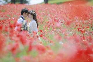 256396_東京_昭和記念公園(洋装)