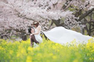 256394_東京_昭和記念公園(洋装)