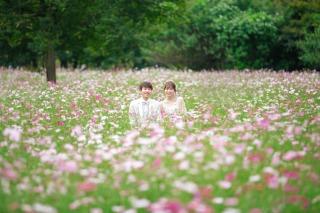 323850_東京_昭和記念公園(洋装)