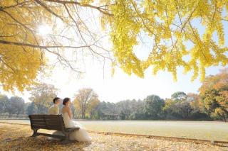 323847_東京_昭和記念公園(洋装)