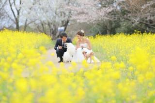 323759_東京_昭和記念公園(洋装)