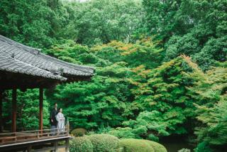 388353_京都_インスタ映えプラン(正寿院・随心院など神社仏閣)