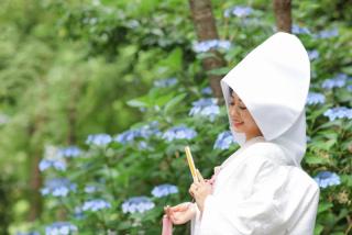 388357_京都_インスタ映えプラン(正寿院・随心院など神社仏閣)