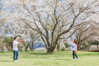 274327_長野_【洋装】緑溢れる軽井沢の春夏