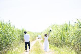 286657_沖縄_Pick Up Photo