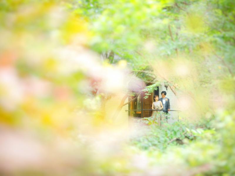 森の邸宅 彩音 森の写真館 BLANCHE_トップ画像4