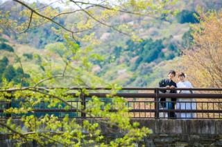 318237_岐阜_location(桜の名所)