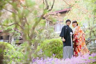 324413_岐阜_location(桜の名所)