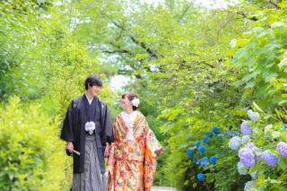 340027_京都_妙蓮寺でのお写真