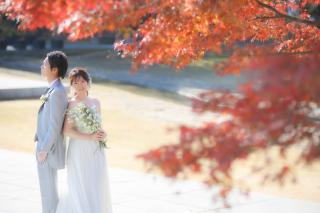 351560_岐阜_秋:紅葉etc