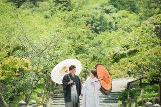 371706_京都_円山公園