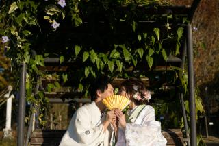 376096_静岡_和装 / ロケーションフォト「浜名湖ガーデンパーク」