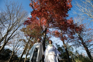 376094_静岡_和装 / ロケーションフォト「浜名湖ガーデンパーク」