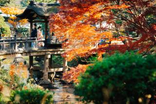 401405_神奈川_三渓園